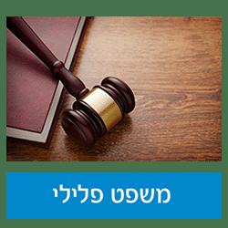ביטול וזיכוי מכתב אישום